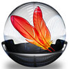ADOBE ImageReady 1.0 for Mac&Win