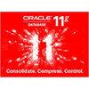 ORACLE 11G 标准版 [25用户]