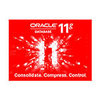 ORACLE 11g(企业版 1CPU)