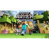 网络游戏《我的世界(Minecraft)》