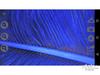 艾尼提数码显微镜3R-MSA600(13)