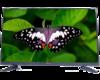 优品液晶U42USB 32英寸网络WiFi款