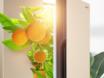 冰箱节电方法