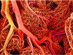 3D打印血管