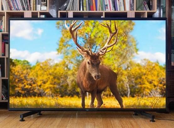 图片包含 室内, 树, 地板, 鹿  描述已自动生成