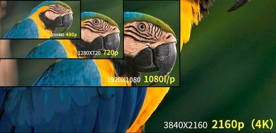 http://dynamic-image.yesky.com/1200x-/uploadImages/2019/155/28/WJMC6AC478GY.jpg