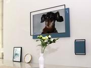 XESS新物种 Living Window浮窗全场景TV现场评测