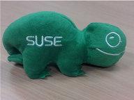 专访SUSE CTO:从边缘、核心到云端,开源的大舞台