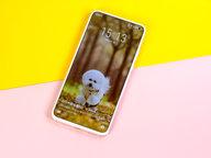 仔细打磨的艺术值得等待 魅族17 Pro 5G梦想旗舰评测