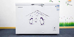 容声冷柜BD/BC-310MSY/HP评测