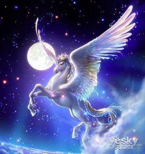 玩《炉石传说》得《魔兽世界》绝版天马坐骑