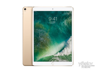 苹果新12.9英寸iPad Pro(256GB/Cellular)