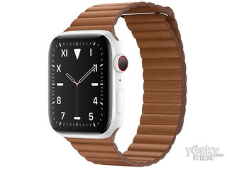 苹果Watch Edition Series 5(GPS+蜂窝网络/精密陶瓷表壳/皮制回环形表带/44mm)