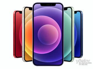苹果iPhone 12(128GB/5G版)