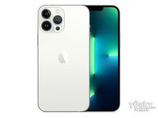 苹果iPhone 13 Pro Max(1TB/全网通/5G版)