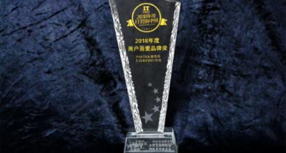 2018年度IT影响中国:博思得获用户喜爱品牌奖