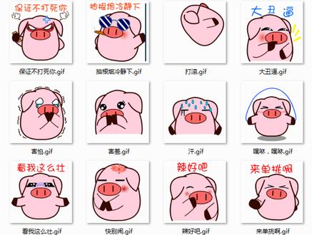 两个可爱猪的照片