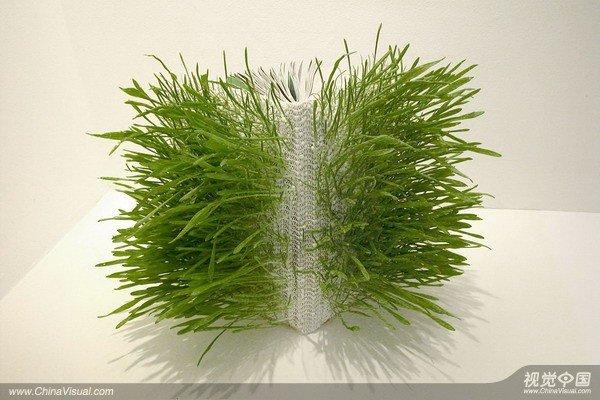 感觉……今天请大家欣赏一个新的创意视觉设计——会长出绿色植物的书