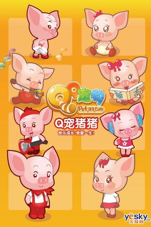 qq宠物最新可爱成员——猪猪简介