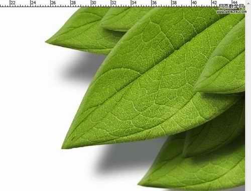 用photoshopt透视变形绘制漂亮的3d质感树叶