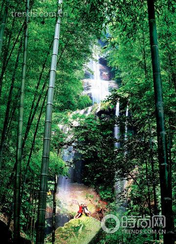 壁纸 风景 森林 桌面 360_500 竖版 竖屏 手机