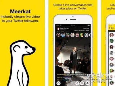 在线视频融资服务商Meerkat获千万美元直播牛喂视频图片
