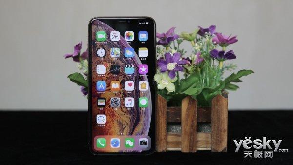 """大屏+A12很爽但5W""""快充""""伤不起 iPhone XS Max体验"""