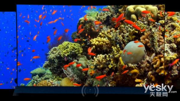 在TCL  X8的高品质原声原色之中  仔细的聆听声音的色彩