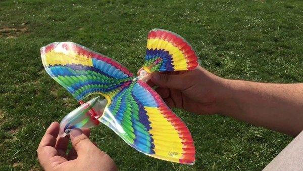 固化的飞行器设计理念 终将被仿生学颠覆