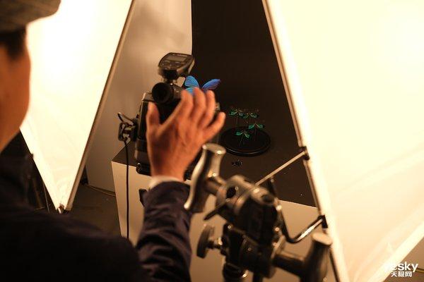 富士无反中画幅GFX100试拍体验(下)