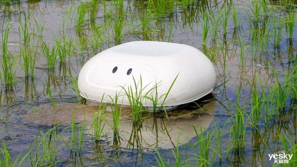 日产的机器鸭保护农田不被杂草侵扰