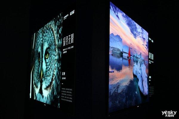 摄影展:创维OLED电视还原《环球人文地理》摄影作品
