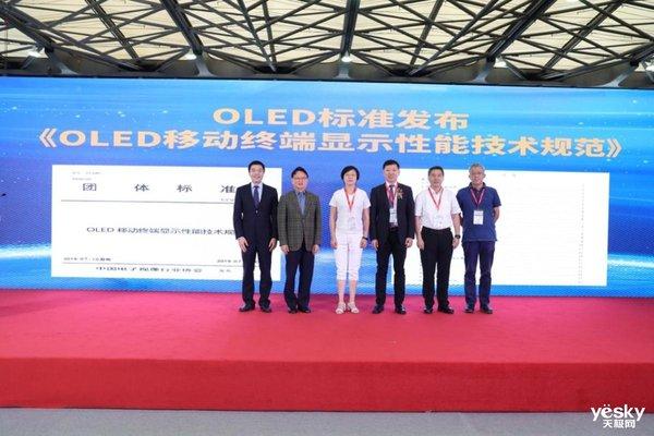 2019中国OLED显示产业峰会圆满落幕