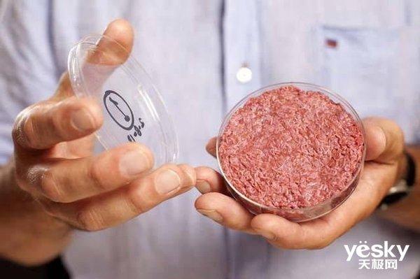 中国首款人造肉将于9月份上市!零胆固醇 低脂肪 适合三高人群