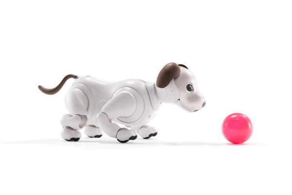 索尼AIBO机械狗迎重大更新 可喂食可训练感觉更像真狗了