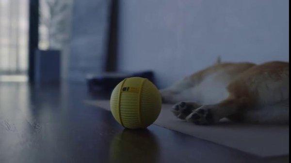 比音箱入口更感性 三星推出智能家庭机器人Ballie