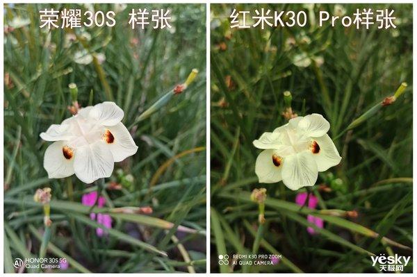 同样是6400万像素成像会否有差距?荣耀30S与红米K30 Pro实拍对比