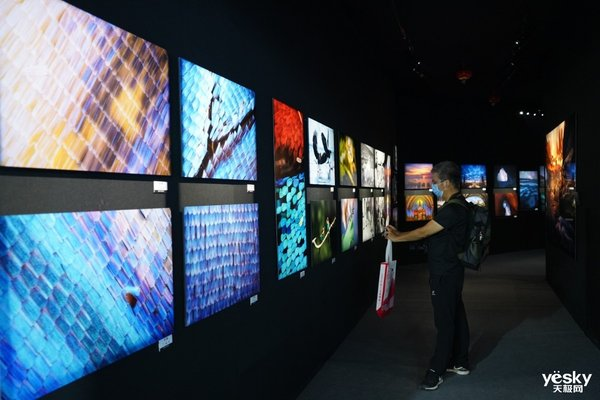 2020 P&I富士展台 体验全系产品的魅力