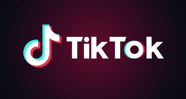 TikToK等中国应用下架后 印度竞品APP新增用户数一度每小时50万