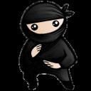 System Ninja