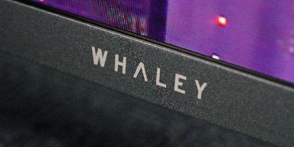 十项全能电视?微鲸电视D系列65D评测